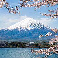 Jalan jalan Wisata ke Mount-Fuji Jepang