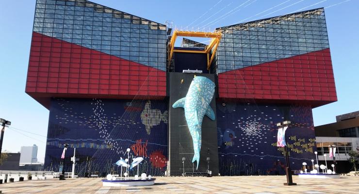 Paket Tour Keluarga ke Osaka Aquarium Kaiyukan Jepang